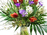 Blumen im Frühling - Narzissen