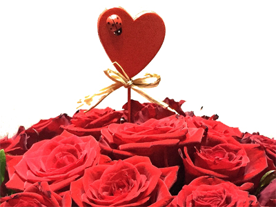 Für Verliebte, der Valentistag!