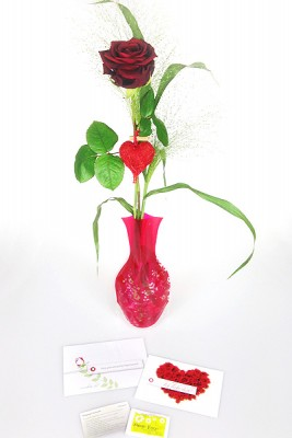 Valentinstag rote Rose Set
