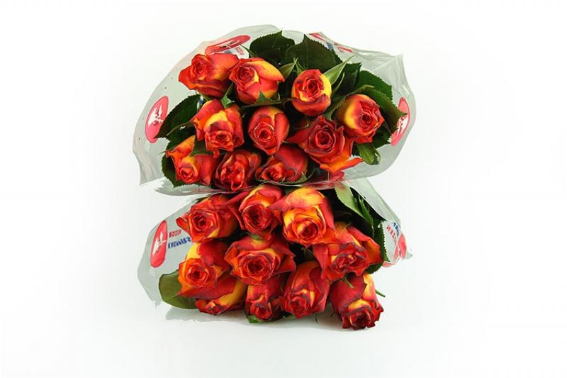 20 Gelb-rote Rosen - Medium