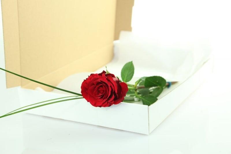 """Rosengruß """"klein aber fein"""