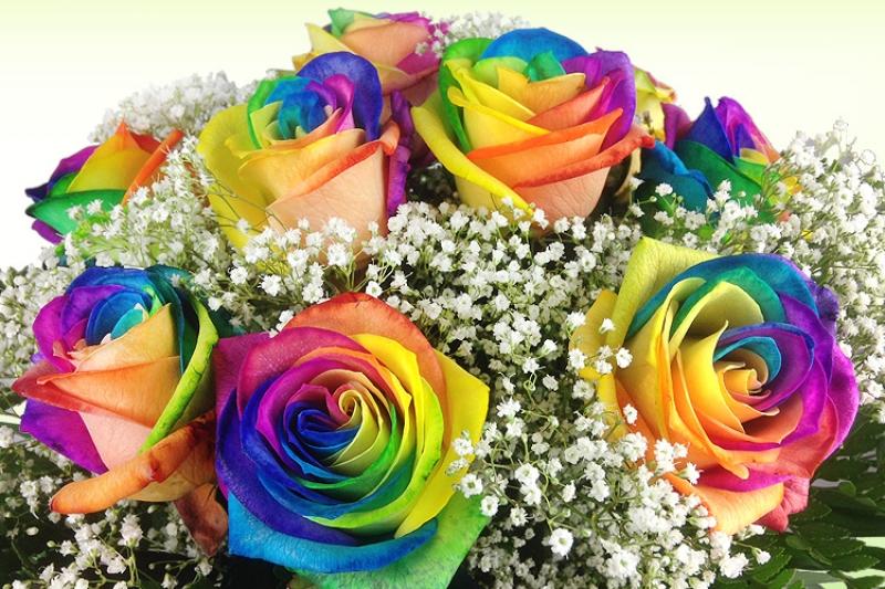 Bunter Blumenstrauß mit Regenbogenrosen