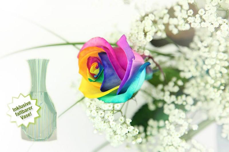 regenbogen rose inklusive gratis vase rosenbote. Black Bedroom Furniture Sets. Home Design Ideas