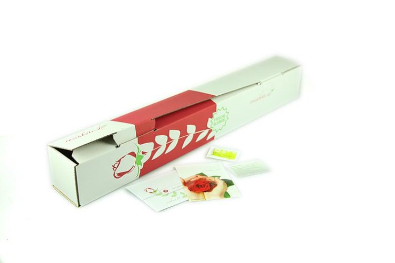 sonnenblume kaufen bestellen verschicken rosenbote. Black Bedroom Furniture Sets. Home Design Ideas