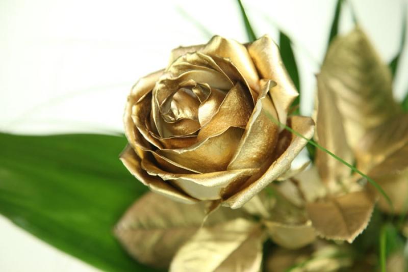 Goldene Rose Mit Schnittgrun Beargrass Und Gratis Vase Rosenbote