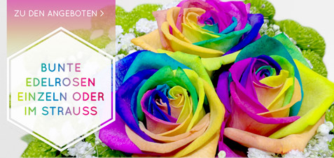 Top Konservieren: Rosen Blumen trocknen - Rosenbote @IS_89