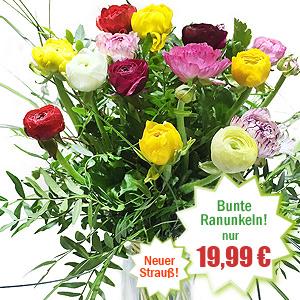 Farbenfrohe Blumen Tulpen Freesien Und Valentinstag